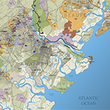 Savannah Area Land Use